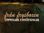 franfrysbox-blogotyp1